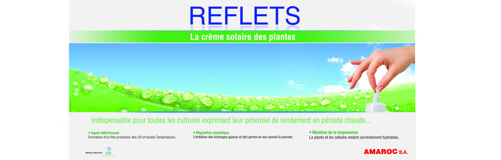 Insertion reflets